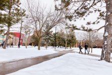 students walking along campus walkway